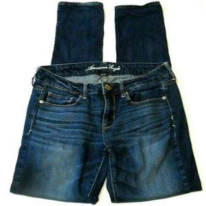 American Eagle Jeans Size 6 R Stretch Skinny